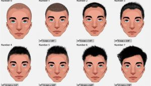 Men S Haircut Lengths Numbers A Few Hair Terms You May Need to Know