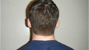 Mens Hairstyles Back View 10 New Back Hairstyles for Men