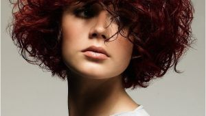 Natural Curly Bob Haircuts Naturally Curly Hairstyles