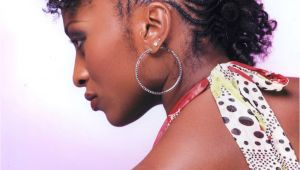 Natural Hairstyles with Braiding Hair My Hairspiration for the Day Braided Updo's