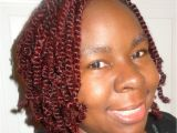 Natural Hairstyles with Braids and Twists Home [akiyia Webs]