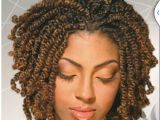 Natural Hairstyles with Braids and Twists Our Gallery