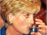 Princess Diana Hairstyle Photos Images 124 Best Princess Diana Hairstyles Images