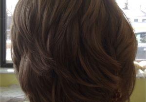 Rear View Bob Haircuts Layered Bob Hairstyle Rear View Hair