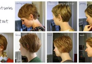 Short Hairstyles Growing Out Pixie Great Visual Of Monthly Interim Styles Between A Pixie and A Bob