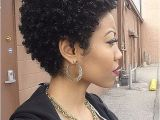 Short Natural Hairstyles for Black Women 2018 Inspirational African American Short Curly Hairstyles 2018
