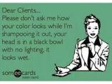 Someecards Hairstylist 146 Best It S A Salon Thing Images