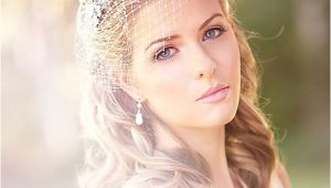 Vintage Wedding Hairstyles with Birdcage Veil Vintage Wedding Birdcage Veil Inspiration